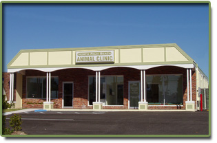 North Palm Beach Animal Clinic   Servering North Palm Beach, Palm Beach  Gardens, Singer